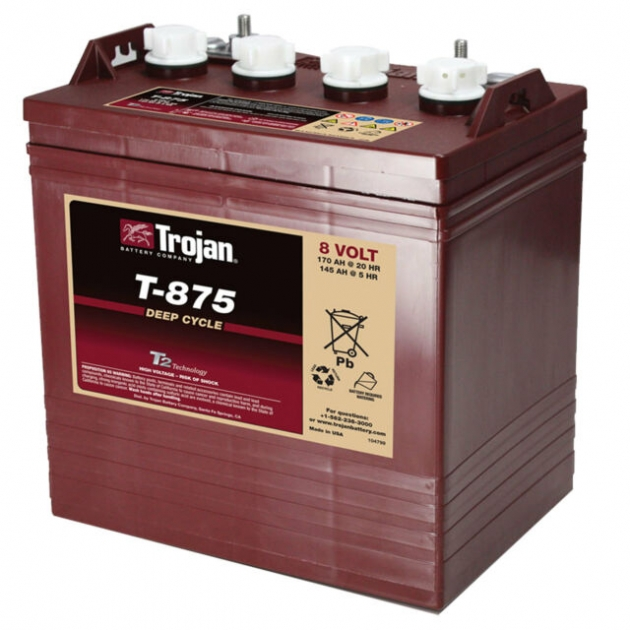 Trojan美國進口8V深循環電池 1